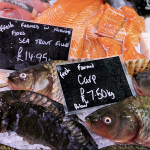 Fish sustainably sourced available in the Fishmarket.